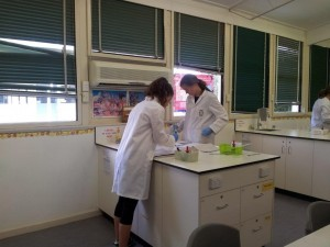 Yr 12 Chem Donald lab