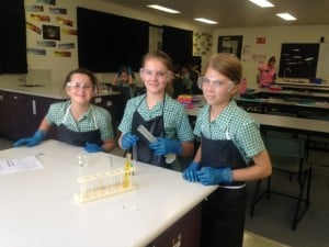 year 5 Science 3